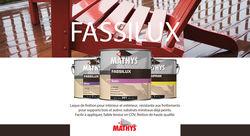 FASSILUX: Laque de finition pour le bois intérieur ou extérieur